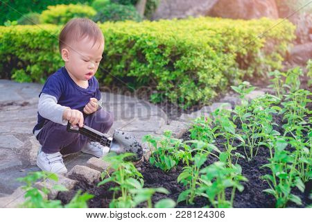Cute Little Asian 18 Months / 1 Year Old Toddler Baby Boy Child Planting Young Tree On Black Soil In