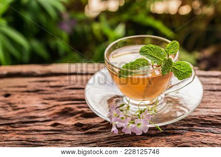 Ginger Teacup With Ginger Slices And Mint Leaf On A Rustic Wooden Table, Nature Background, Beverage