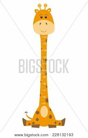 Meter Wall Giraffe. Giraffe Isolated Drawing With Measures To Know The Height Of Your Child