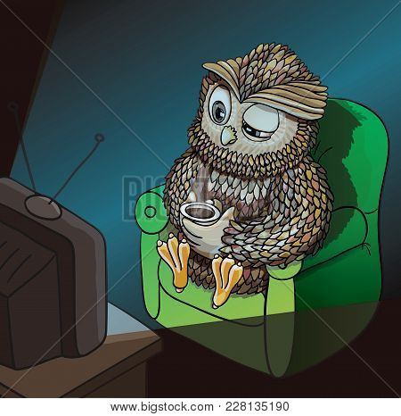 Sleepy Owl With Cup Of Coffee, Watching Tv Late At Night, Wahtching Sci-fi, Comedy, Horror Movie. Fu