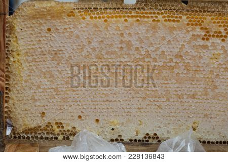 Honey Comb Is On Sale At The Agricultural Exhibition