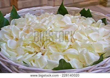Basket With White Fresh Rose Petals Closeup