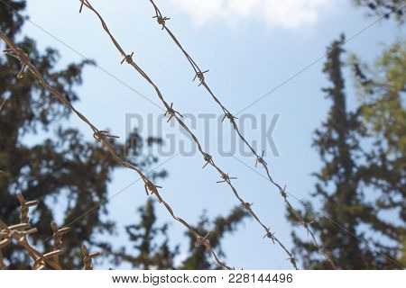 Barbed Wire In Jail Against Free Blue Sky