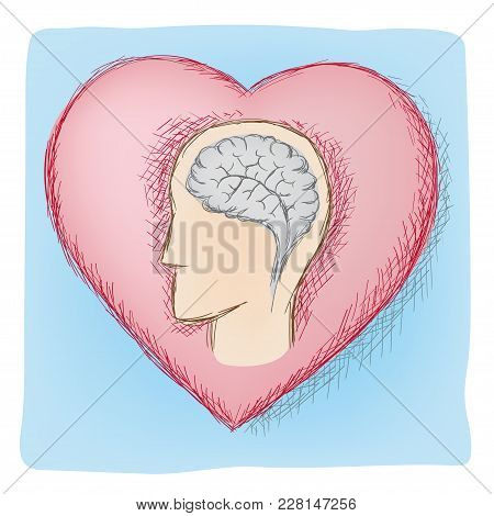 Head And Heart Connected Organs