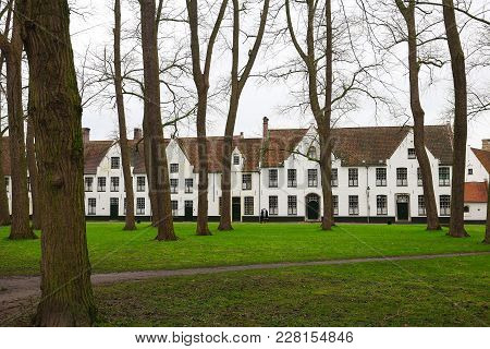 A Beautiful View Of The Park And Lovely White Houses