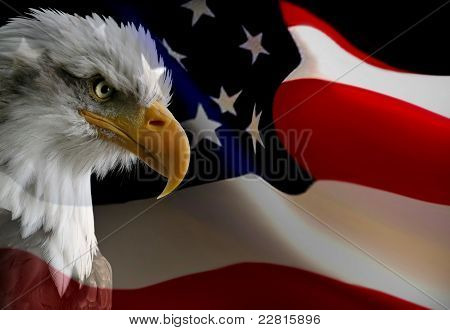 Proud to be American