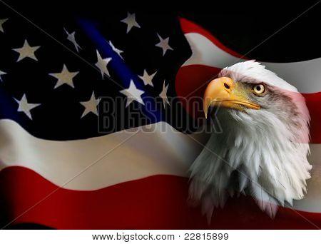 Suchen Sie nach Amerika