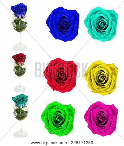 Many Beautiful Roses Without Background, Flowers Roses Isolated In Large Numbers. Sets Flowers