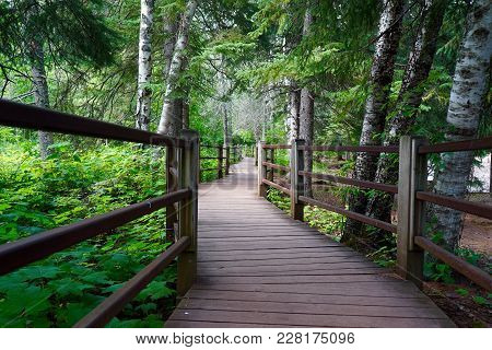 Hiking Trail At Gooseberry Falls State Park In Northern Minnesota