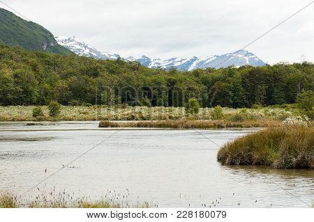 A Pond Winding Its Way Through The Marsh In Tierra Del Fuego National Park With The Snowy Andes Moun