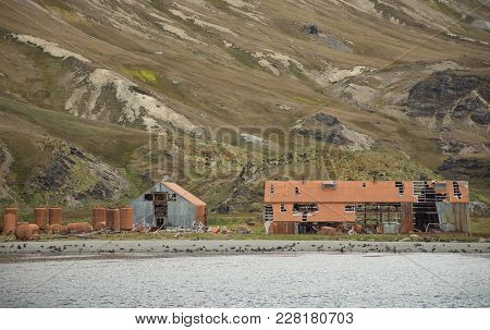 The Dilapidated, Rusted Metal Buildings Of A Whaling Station At Stromness In South Georgia. Seals Ar