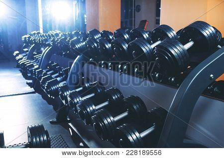 A Set Of Dumbbells In The Gym. Sports Equipment