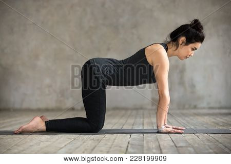 Young Woman Practicing Yoga, Doing Asana Paired With Cat Pose On The Exhale Exercise, Cow, Bitilasan
