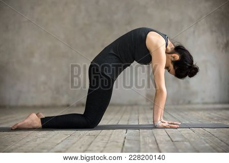 Young Woman Practicing Yoga, Doing Asana Paired With Cow Pose On The Inhale Exercise, Cat, Marjaryas