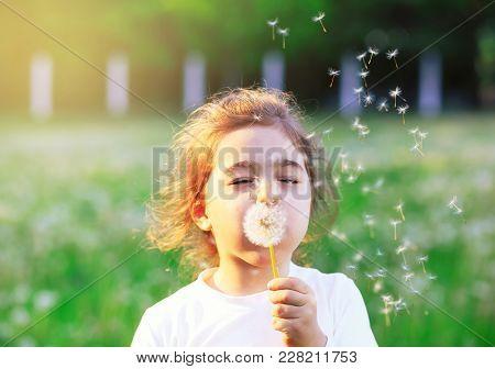 Beautiful Little Girl Blowing Dandelion Flower In Sunny Summer Park. Happy Cute Kid Having Fun Outdo