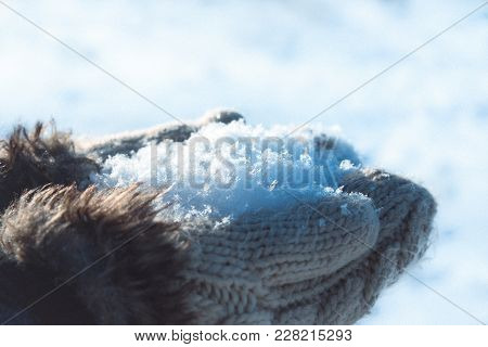 Horizontal Shot Of Fluffy Snow In Knitted Mittens. Winter Concept