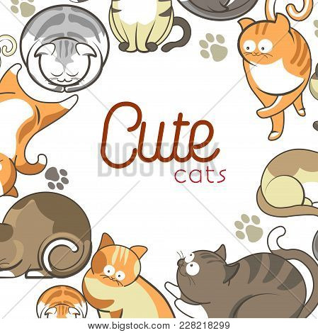 Cute Cartoon Cats And Kittens Playing, Sleeping Or Posing Poster. Vector Flat Design Of Funny Cheerf