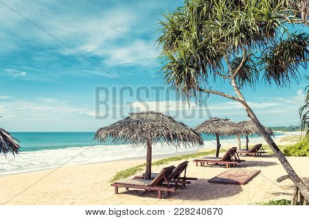 Beach Beds With Umbrellas On The Tropical Beach In Sri Lanka. Scenic View Of A Sand Beach. Beautiful