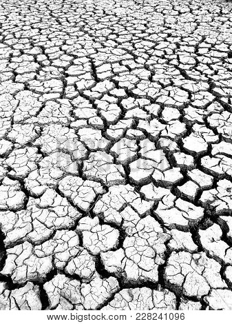 Cracked barren land