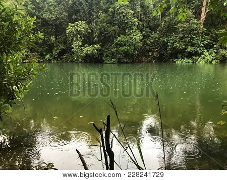 Peaceful green lake surrounded by lush tropical forest with light rain.