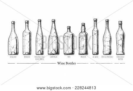 Vector Hand Drawn Illustration Of Wine Bottle Types In Vintage Engraved Style. Burgundy, Bordeaux, H