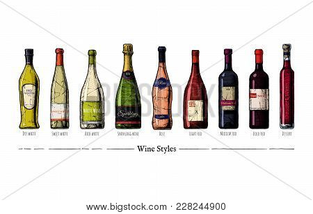 Vector Hand Drawn Illustration Of Wine Styles In Vintage Engraved Style. Rich, Sweet And Dry White,