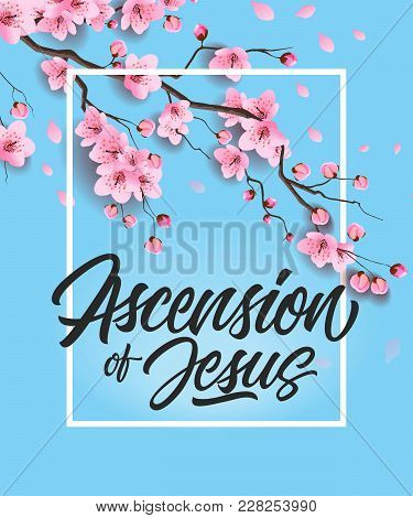 Ascension Of Jesus Lettering In Frame With Blooming Cherry Tree. Calligraphic Inscription Can Be Use