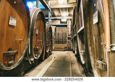 A Lot Of Barrels Of Wine In The Cellar