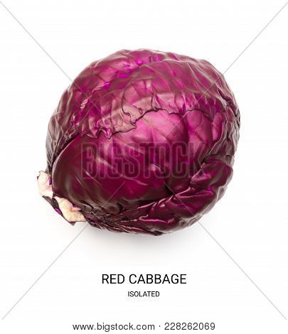 Whole Red Cabbage Isolated