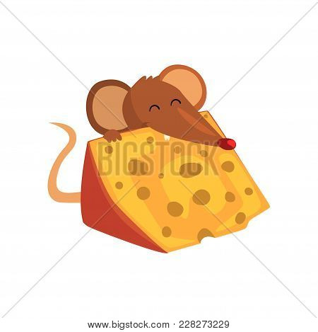 Cute Brown Mouse Eating Big Piece Of Cheese, Funny Rodent Character Cartoon Vector Illustration Isol