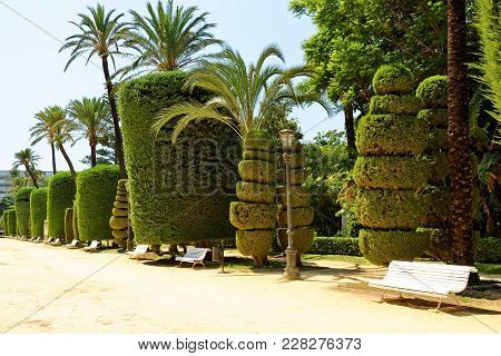 Genoves Park, An Exotic Garden Oasis In Cadiz, Andalusia, Spain. It Is Lined With Different Species