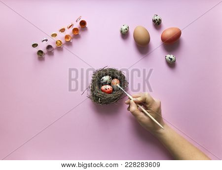 On A Pink Background With A Paint Egg Chicken And Quail Nest With Three Quail Eggs Red And Orange Co