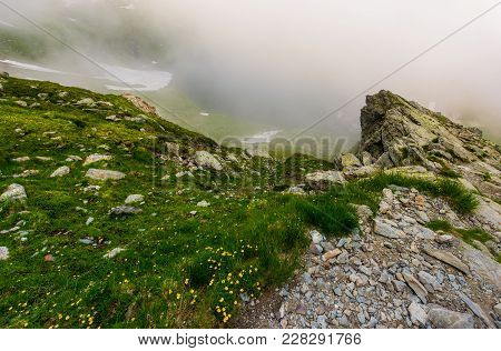 Rocky Cliffs In Foggy Weather. Wild Flowers Among The Grassy Slopes. Dramatic View From The Hill