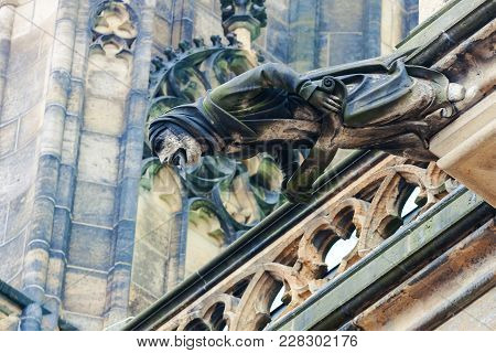 Gothic Style Gargoyle On St Vitus' Cathedral Prague