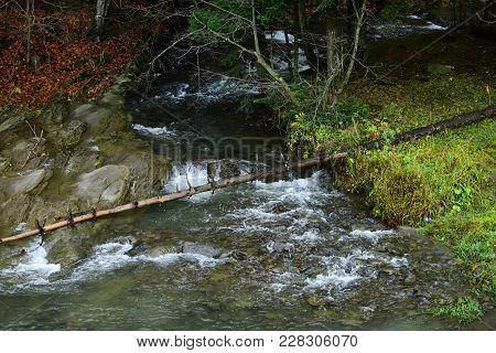 Mountain River Or Stream In Forest. Source Of Water In Nature. Forest Landscape Concept. Stream Flow