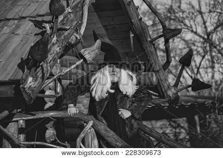 Old Druid Man With Long Silver Hair And Beard In Black Halloween Hat Stands Outdoors On Sunny Day On