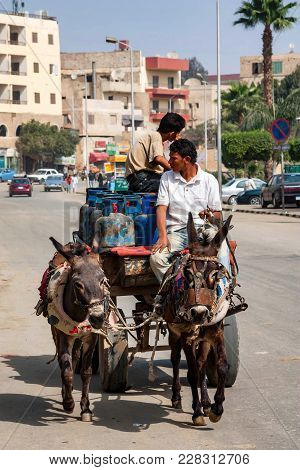 Hurghada, Egypt- February 22, 2010: Two Young Unidentified Mule Riders On Cart On Road. Mules Were K