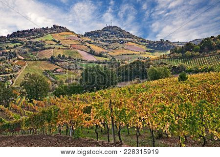 Bertinoro, Forli-cesena, Emilia Romagna, Italy: Autumn Landscape Of The Hilly Countryside With Viney