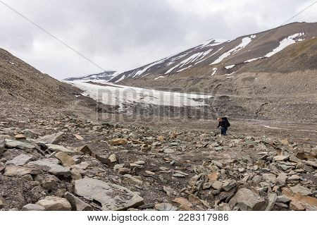 Man Searching For Fossils In A Rocky Longyear Glacier Moraine In Svalbard, Norway, At Summer. Plant