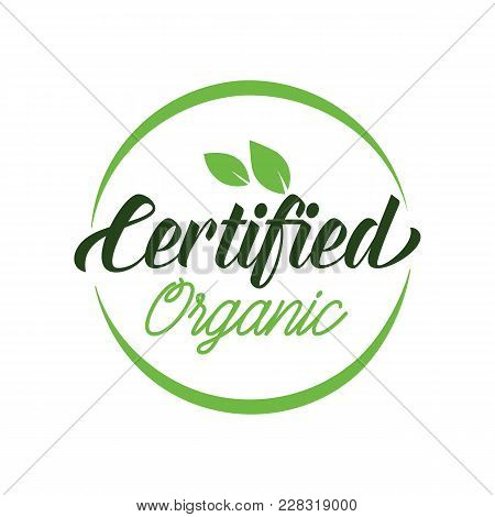 Certified Organic Lettering. Creative Inscription With Leaves In Green Frame Devoted To Healthy Life