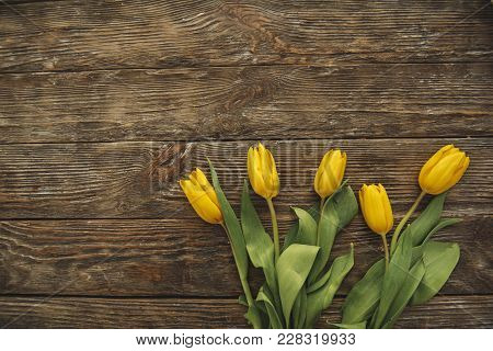 Top View Of Fresh Tulips Lying On The Wood. Copy Space In Left Side