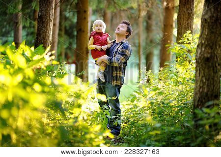Father And His Little Son During The Hiking Activities In Forest At Sunset. Family Walking In Summer
