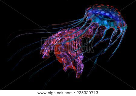 Blue Red Jellyfish On Black 3d Illustration - The Ocean Jellyfish Searches For Fish Prey And Uses It
