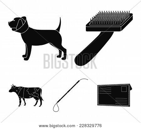 Dog, Cow, Cattle, Pet .vet Clinic Set Collection Icons In Black Style Vector Symbol Stock Illustrati