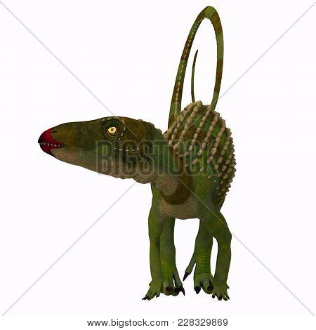 Scutellosaurus Dinosaur On White 3d Illustration - Scutellosaurus Was An Armored Herbivore Dinosaur