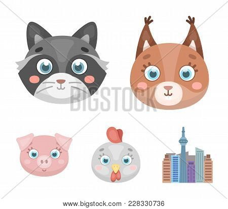 Protein, Raccoon, Chicken, Pig. Animal's Muzzle Set Collection Icons In Cartoon Style Vector Symbol
