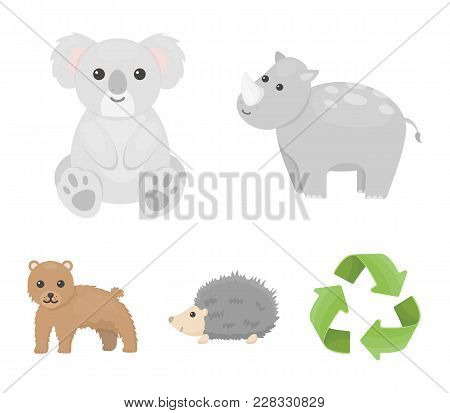 Rhino, Koala, Panther, Hedgehog.animal Set Collection Icons In Cartoon Style Vector Symbol Stock Ill