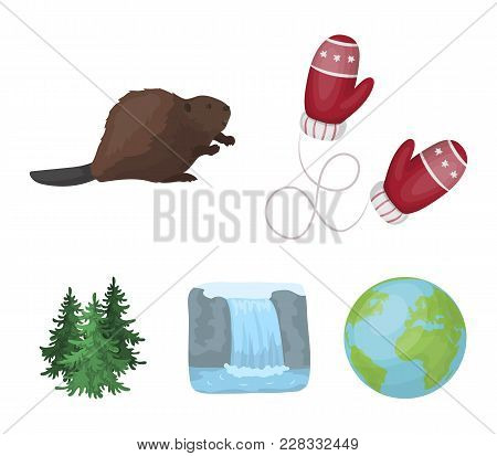 Canadian Fir, Beaver And Other Symbols Of Canada.canada Set Collection Icons In Cartoon Style Vector