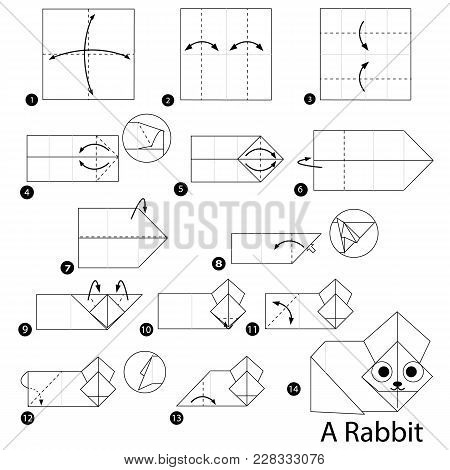 Step By Step Instructions How To Make Origami A Rabbit
