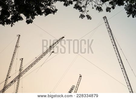 Silhouette Of The Crane Operating With Tree Foreground